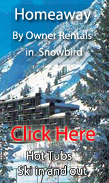 ski in out by owner vacation rentals in snowbird